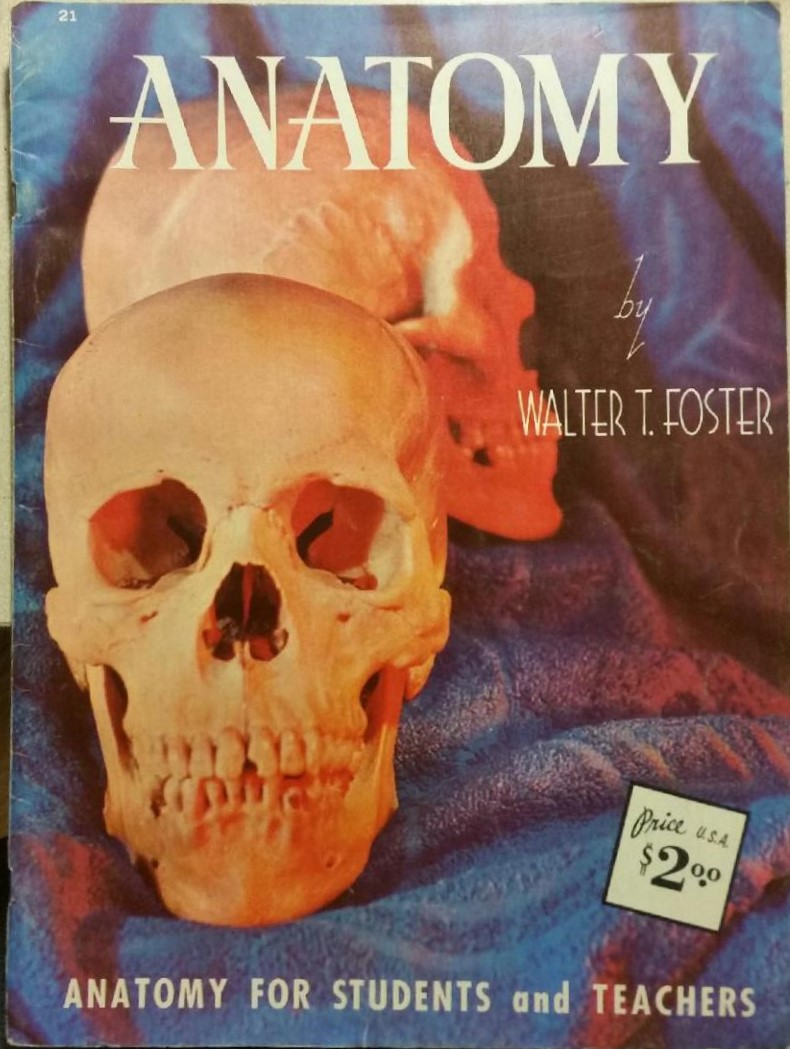 Anatomy by Walter T. Foster
